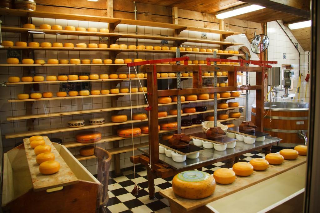 cheese-21824_1920