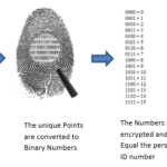 How fingerprint time and attendance works
